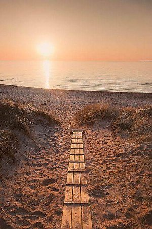 Home. Path on beach